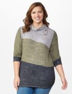 DB Sunday Color Block Hacci Cowl Neck Sweater Knit Top - Plus - 6