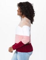 Roz & Ali Chenile Colorblock Pullover Sweater - 3