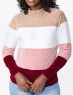 Roz & Ali Chenile Colorblock Pullover Sweater - 4