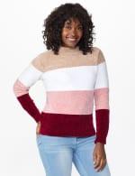 Roz & Ali Chenile Colorblock Pullover Sweater - 5