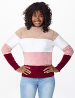 Roz & Ali Chenile Colorblock Pullover Sweater - 6