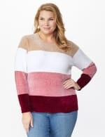 Roz & Ali Chenile Colorblock Pullover Sweater - Plus - 5