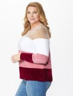 Roz & Ali Chenile Colorblock Pullover Sweater - Plus - 3
