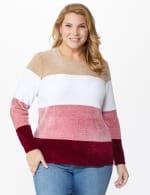 Roz & Ali Chenile Colorblock Pullover Sweater - Plus - 6