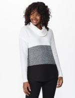 Westport Colorblock Cowl Neck Curved Hem Sweater - 6