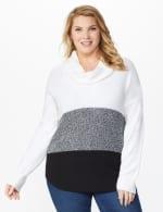 Westport Colorblock Cowl Neck Curved Hem Sweater - Plus - 5
