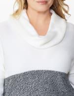 Westport Colorblock Cowl Neck Curved Hem Sweater - Plus - 4