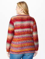 Roz & Ali Ombre Pullover Sweater - Plus - Multi - Back