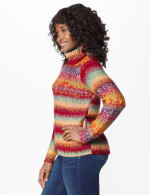 Roz & Ali Ombre Pullover Sweater - 4