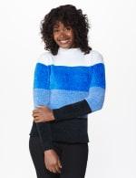 Roz & Ali Chenile Colorblock Pullover Sweater - 12