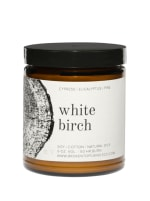 White Birch- 9 oz. Soy Candle- Botanical Collection - 1