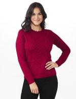 Roz & Ali Pointelle Ruffle Trim Pullover Sweater - 1