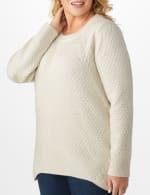 Lurex Sharkbite Pullover Sweater - Plus - 10