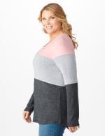 Westport Sweater Knit Color Block Top - Plus - 3