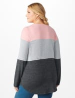 Westport Sweater Knit Color Block Top - Plus - Pink/Grey - Back