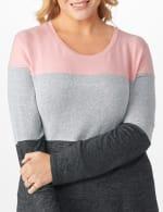Westport Sweater Knit Color Block Top - Plus - 4