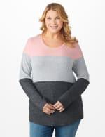Westport Sweater Knit Color Block Top - Plus - 5