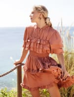 Linnette Victorian Style Mini Dress - Plus - 5