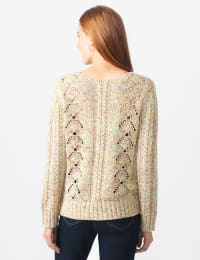 Roz & Ali Novelty Fringe Pullover Sweater - Misses - Multi - Back