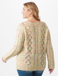 Roz & Ali Novelty Fringe Pullover Sweater - Plus - Multi - Back