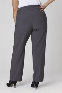 Roz & Ali Plus Secret Agent Tummy Control Pull On Pants - Average Length-Plus - grey - Back