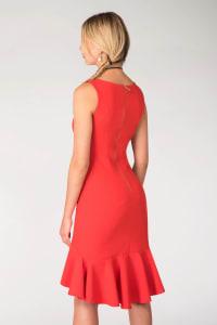 Red Frilled Skirt Panel Dress - Back