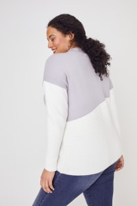 Roz & Ali Colorblock Pullover Sweater - Plus - Pearl Grey/Winter White - Back