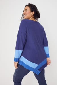 Westport Colorblock Asymmetrical Sweater - Plus - Blue Combo - Back