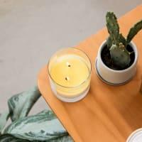 Musk and Teakwood Glass Tumbler - Soy Wax Candle 8.25 oz. - White - Back