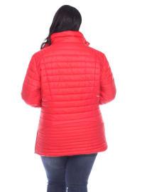 Lightweight Front Zipper Puffer Coat - Plus - Back