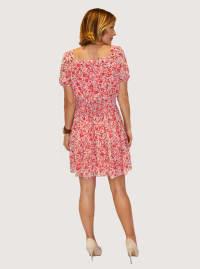Taylor Printed Chiffon Dress - Back