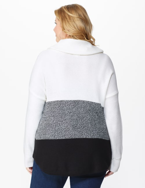 Westport Colorblock Cowl Neck Curved Hem Sweater - Plus - Back