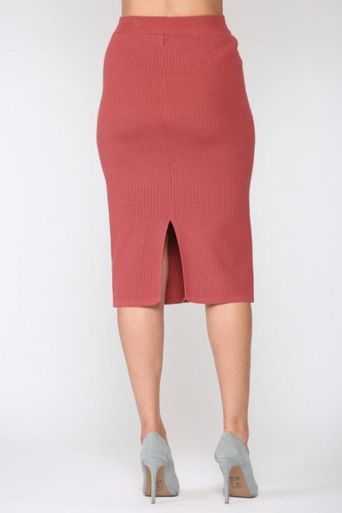Shantelle A-Line Skirt - Back