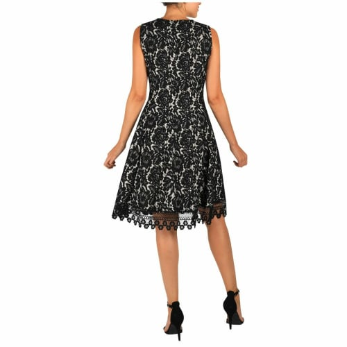 DR Sleeveless Fit And Flare Lace Dress - Back