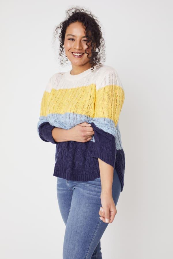 Colorblock Curved Hem Sweater - Plus