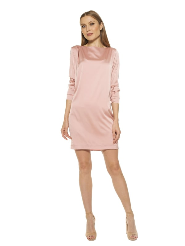 Dakota Draped Sleeve Shift Dress - Blush - Front