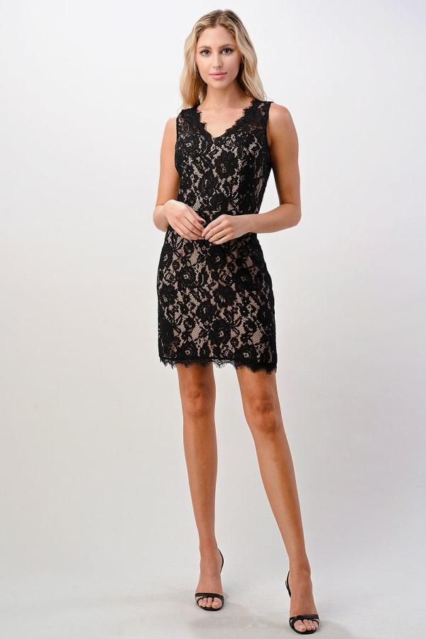 Kaii Two Tone Lace V-Neck Dress