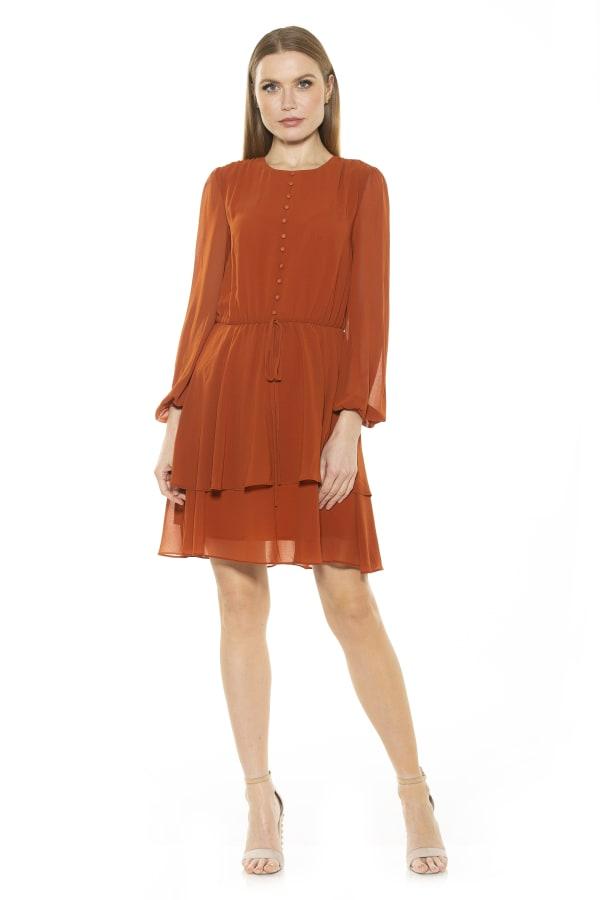Balia Dropped Waist Ruffle Dress - Red Rust - Front