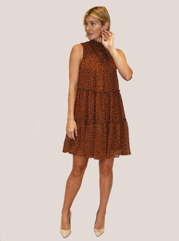 Taylor Dresses Sleeveless Mock Neck Smocked Polka Dot A-line Chiffon Dress - Terra / Ivory - Front