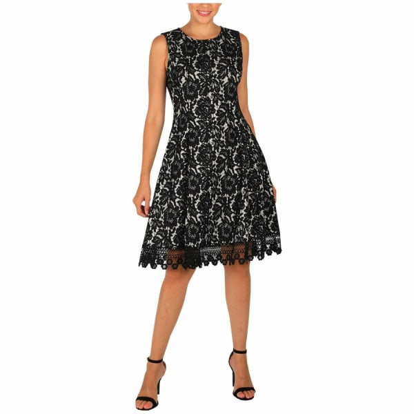 DR Sleeveless Fit And Flare Lace Dress