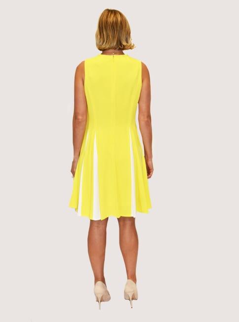 Taylor Dresses Color Block Fit & Flare Dress