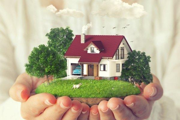 С чего начать оформление земли и как приватизировать дачный участок?