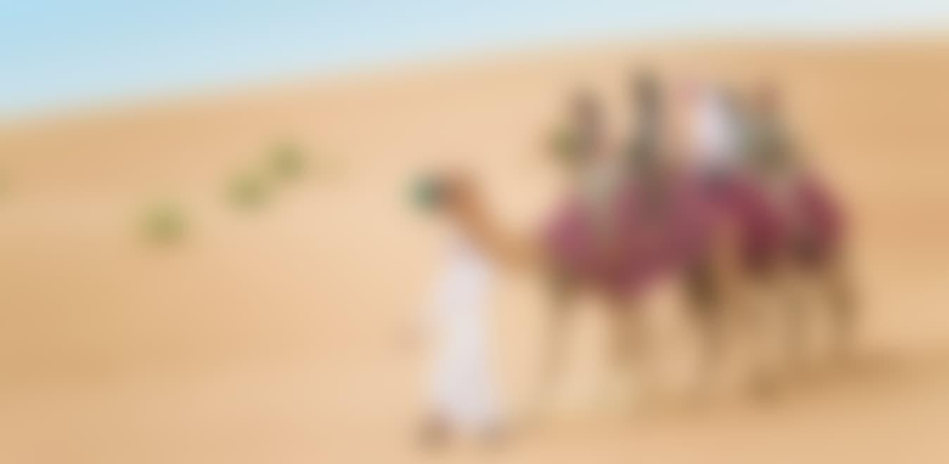 Summer Sunset Camel Trek