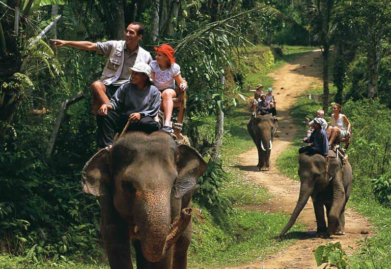 Elephant Safari Ride