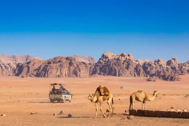 Dream Journey Desert Safari and Sightseeing Tickets