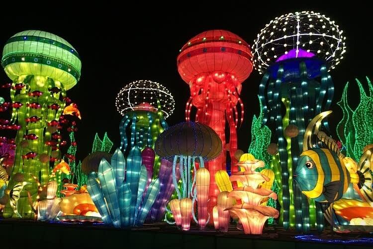 Dubai Garden Glow Tickets