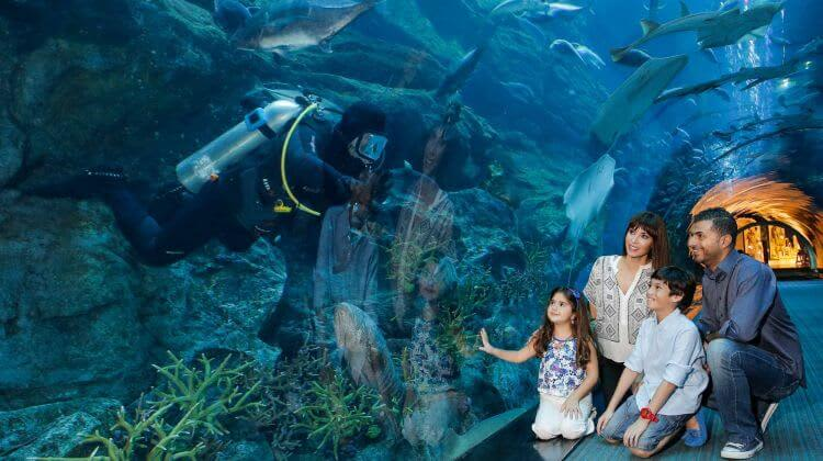 Dubai Aquarium Tickets