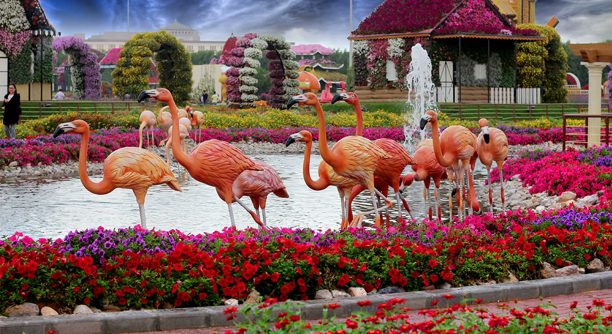 Miracle Garden Dubai Tickets