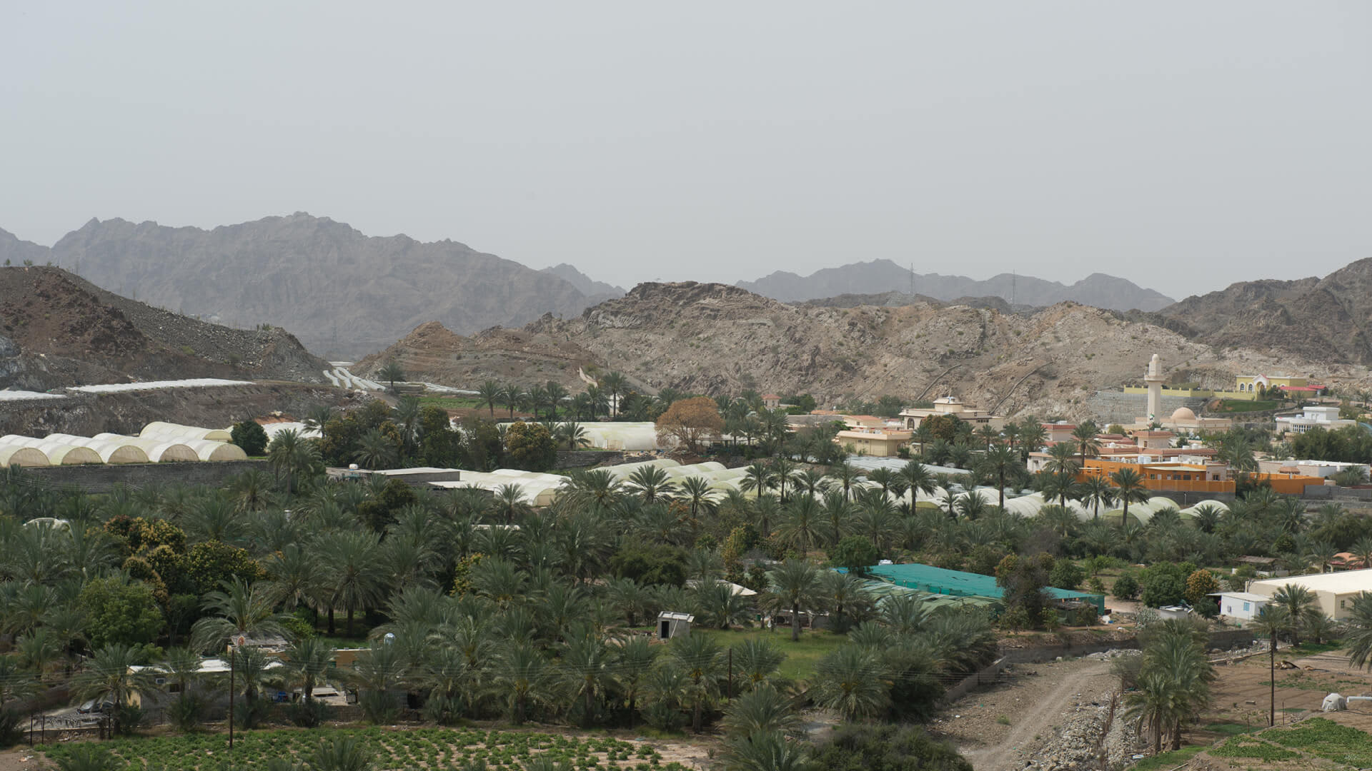 Day Tour to the East Coast & Fujairah with Lunch