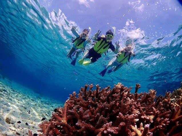 AquaStar Bali